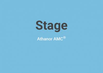 Stage « Contes des Fous et d'autres perles de Sagesse » – 2019